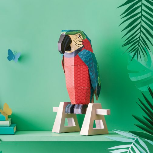 childrens craft, make your own parrot