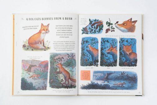 Children's Book: Slow Down