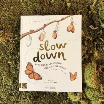 Slow Down: Bring Calm to a Busy World with 50 Nature Stories – Rachel Williams & Freya Hartas