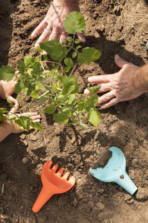 children's gardening rake