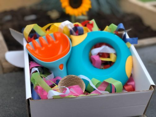 grow your own gift box