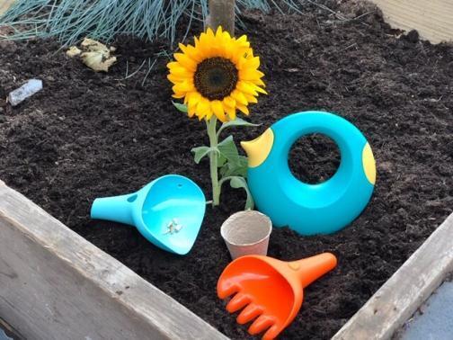 little gardener gift set
